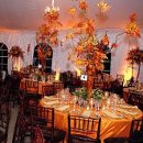 130x130 sq 1231448072796 fall centerpieces wedding[1]